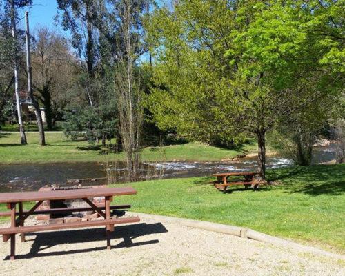 Riverside Hoilday Park Bright Ovens River Frontage